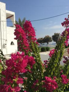 Beach Break, Aparthotely  Faliraki - big - 61
