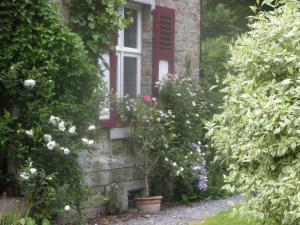 B&B Le Bois Dormant, Bed & Breakfast  Spa - big - 19