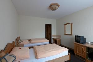 Gasthof Schulte, Hotels  Menden - big - 5
