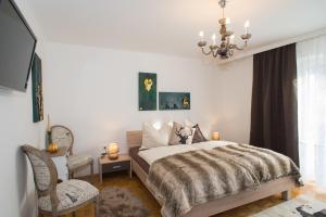 Appartements Hötzendorfer, Apartmány  Schladming - big - 20