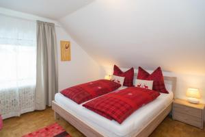 Appartements Hötzendorfer, Apartmány  Schladming - big - 32