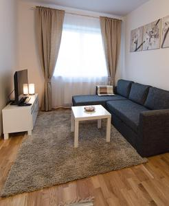 Lovely Dream Apartment, Apartmány  Vilnius - big - 13