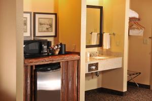 Grand Lodge Waterpark Resort, Hotel  Rothschild - big - 11