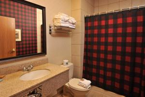 Grand Lodge Waterpark Resort, Hotel  Rothschild - big - 12