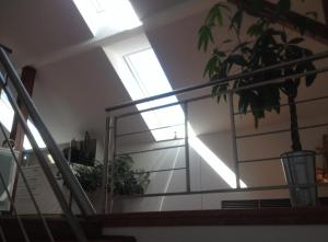 Apartmán Jugoslávská, Апартаменты  Карловы Вары - big - 12
