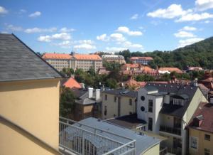 Apartmán Jugoslávská, Апартаменты  Карловы Вары - big - 4