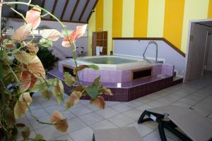 Auberge d'Imsthal, Hotely  La Petite-Pierre - big - 17