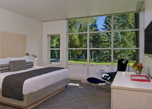 Deluxe One-Bedroom Suite with Mountain View