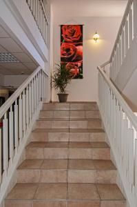 Hotel Gabrini, Hotely  Marina di Massa - big - 46