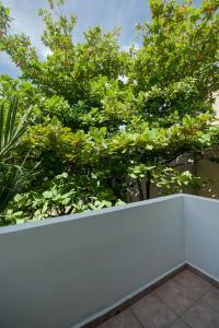 Mango y Papaya, Apartmány  Playa del Carmen - big - 41