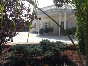Villa Rosato, Apartmány  Selva di Fasano - big - 136