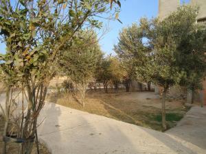 Takad Dream Hostel Rural, Hostels  Sidi Bibi - big - 10
