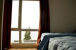 Bariloche Home, Apartmány  San Carlos de Bariloche - big - 87