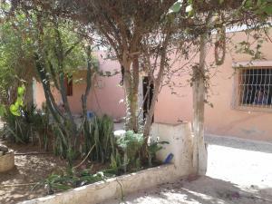 Takad Dream Hostel Rural, Hostels  Sidi Bibi - big - 20