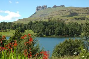 Lake Naverone Holiday Cottages, Rezorty  Drakensberg Garden - big - 38