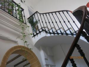Hostal Fenix, Affittacamere  Jerez de la Frontera - big - 31