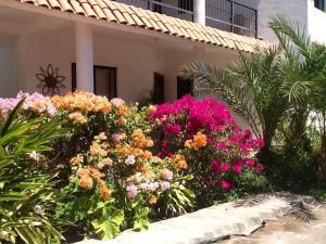 Villa Datil II by Villa Santo Niño, Appartamenti  Loreto - big - 20