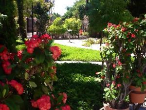 Villa Datil II by Villa Santo Niño, Appartamenti  Loreto - big - 14