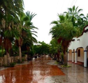 Villa Datil II by Villa Santo Niño, Appartamenti  Loreto - big - 45