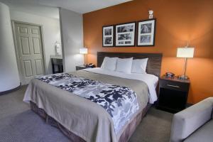 Sleep Inn & Suites Danville, Отели  Danville - big - 4
