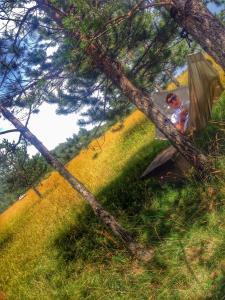 Previja Zlatibor Chalet, Horské chaty  Zlatibor - big - 57