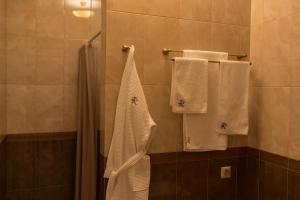 Business club hotel RAZUMOVSKY, Szállodák  Omszk - big - 55