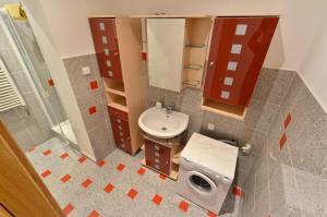 Residence Salvia, Apartmanok  Liberec - big - 7