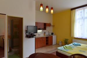Residence Salvia, Apartmanok  Liberec - big - 9