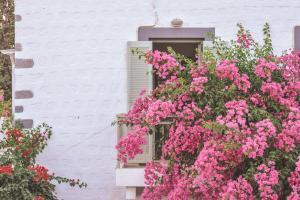 Patmos Villas, Апартаменты  Грикос - big - 157