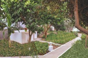 Patmos Villas, Апартаменты  Грикос - big - 159