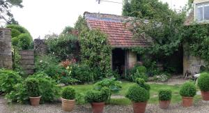Yew Tree Cottage B&B, Bed and Breakfasts  Turkdean - big - 12