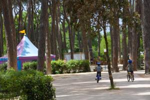 Park Albatros, Villaggi turistici  San Vincenzo - big - 61