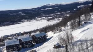Funäs Ski Lodge – House A & C
