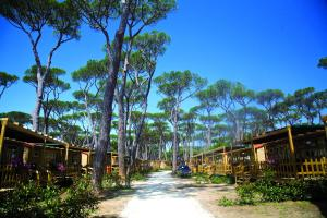 Park Albatros, Villaggi turistici  San Vincenzo - big - 63