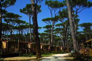 Park Albatros, Villaggi turistici  San Vincenzo - big - 62