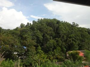 Sherenes Homestay, Alloggi in famiglia  Kandy - big - 7