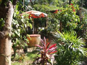 Oasis Tourist Welfare Center, Pensionen  Dambulla - big - 34