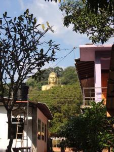 Oasis Tourist Welfare Center, Pensionen  Dambulla - big - 20