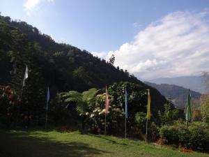 Rinchingpong Village Resort, Rezorty  Pelling - big - 5