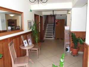 Vila Toparceanu Otopeni, Гостевые дома  Отопени - big - 53
