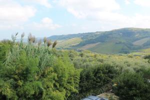 Agriturismo Montupoli