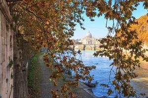 Vatican Domus, Penzióny  Rím - big - 40