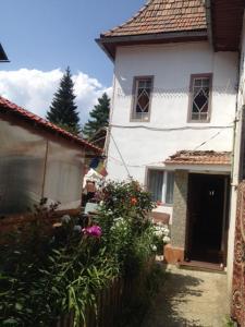 Casa Medy