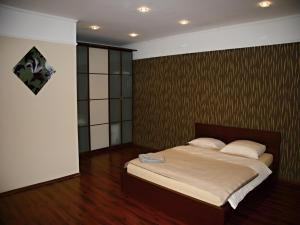 Apartmán Dr. Engla, Apartmány  Karlove Vary - big - 4