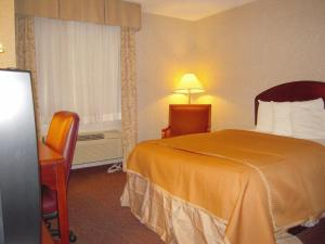 Queen Room - Disability Access with One Queen Bed - Non-Smoking