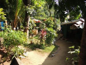 Oasis Tourist Welfare Center, Pensionen  Dambulla - big - 38