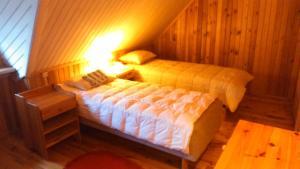 Saare Guest Apartment