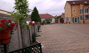 Pensiunea Sergiu & Geanina, Guest houses  Arad - big - 39