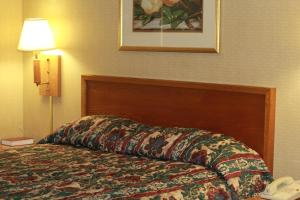 Palmetto Inn Florence, Hotels  Florence - big - 21