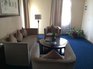 Soluxe Cairo Hotel, Hotely  Káhira - big - 10